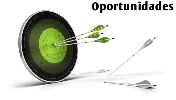 Oportunidades de negócio