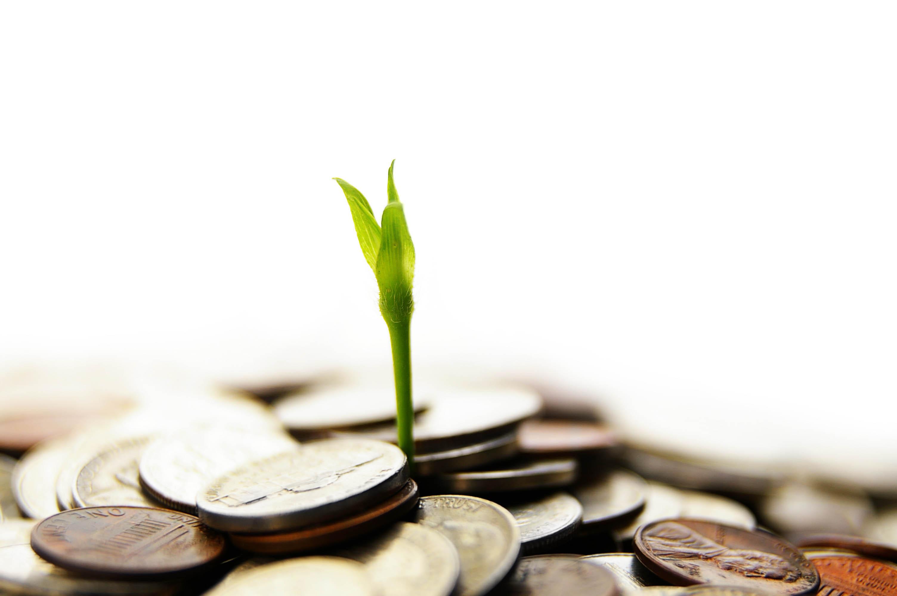 investimento custo de importacao
