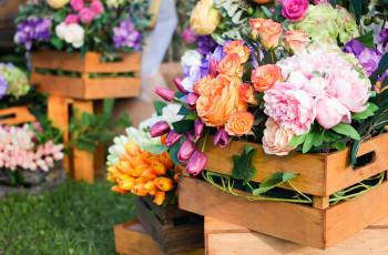 Importação de Flores Artificiais