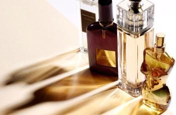 Importação de Perfumes Similares
