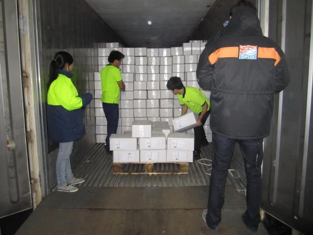 Garantir o embarque na importação 3
